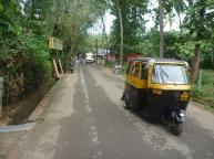 Rickshaws flying by