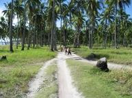 1.malapascua.roads.jpg