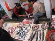 Cheung-Chau-Island-fish-market.jpg