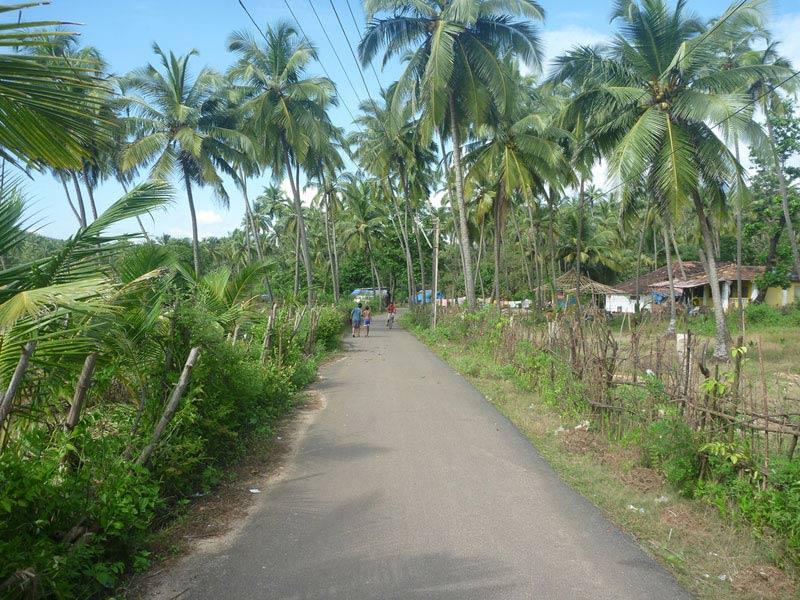 More typical Goan scenery
