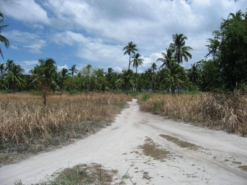 malapascua.mainland.jpg